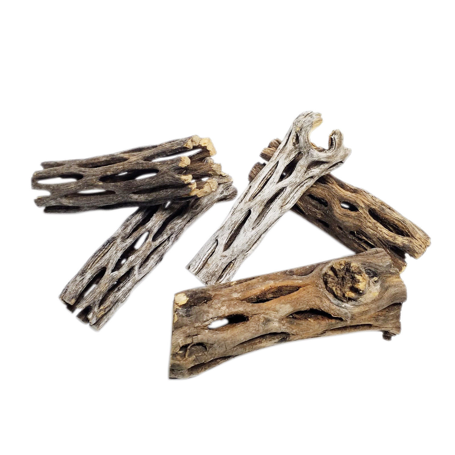 3″ Cholla Wood